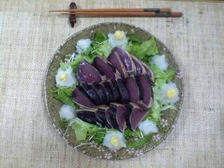 20050412_katsuo