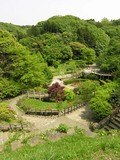 20050430_chuokoen