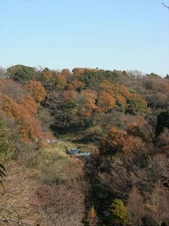 20051215_kawakura_chuo2