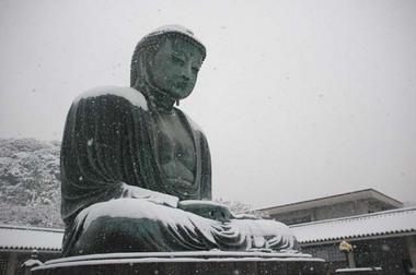 20060121_snow2_daibutsu