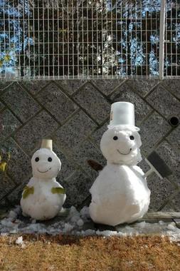 20060122_snowman
