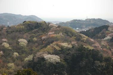 20060401_kinubariyama