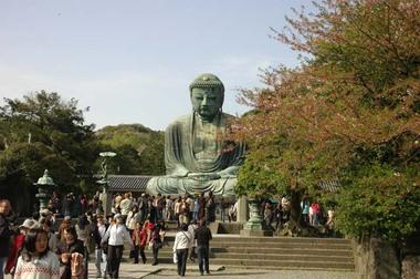 20060415_kotokuin