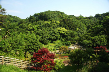 20060521_chuo_park