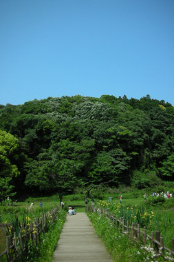 20060521_chuo_park2