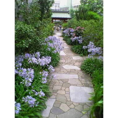 20060714_daigyoji