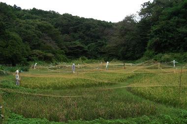 20060923_chuokoen