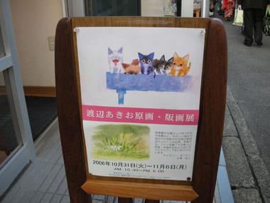 20061105_cat