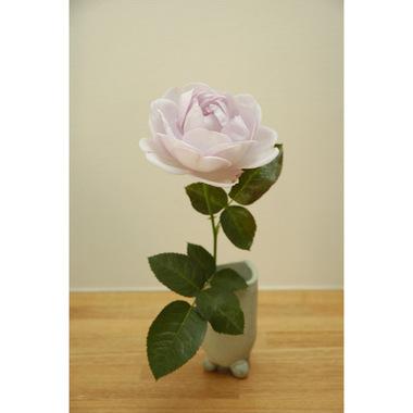 20061118_rose