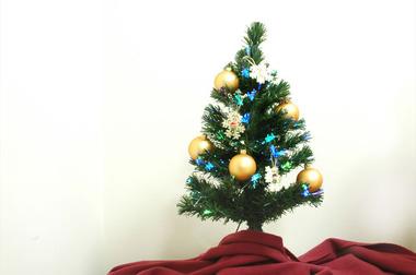 20061213_tree