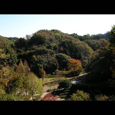 20071118_chuokouen1