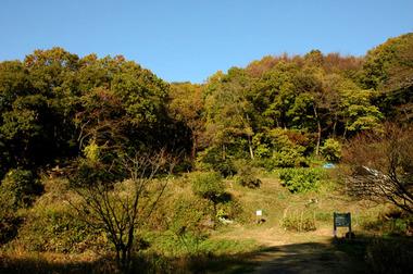 20071125_yatomatsuri5