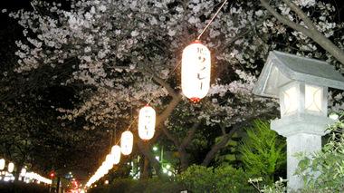 20070328_dankazura2