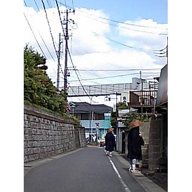 20070528_takuhatsu1