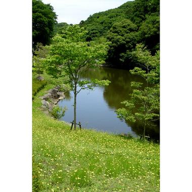 20070603_chuokouen_1