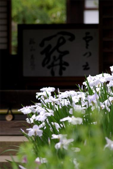 20070609_kaizoji1