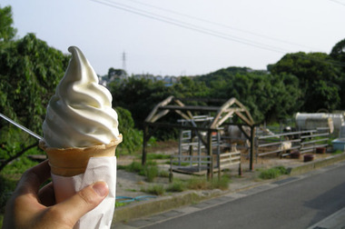 20070708_sekiguchi_farm1