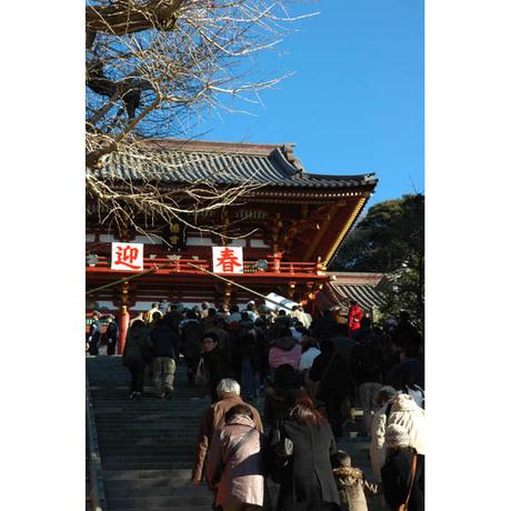 20080101_hachimangu2