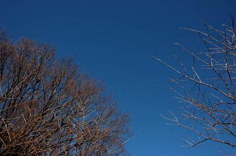 20080104_sky