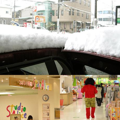 20080203_snow