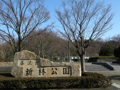 20080211_shinbayashi1