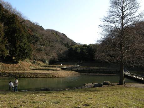 20080211_shinbayashi3