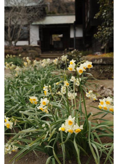 20080216_kaizoji4
