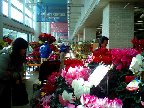 20071223_gardencenter1