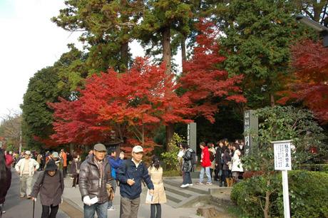 20071201_engakuji1