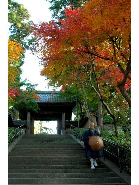 20071201_engakuji3