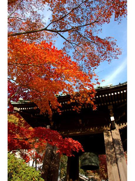 20071202_kaizoji2