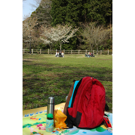 20080329_picnic2