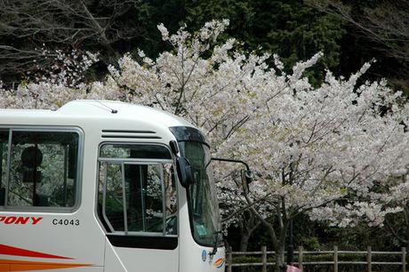 20080404_chuokoen