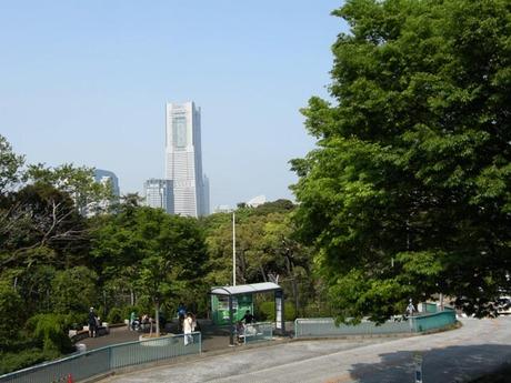 20080430_nogeyama1