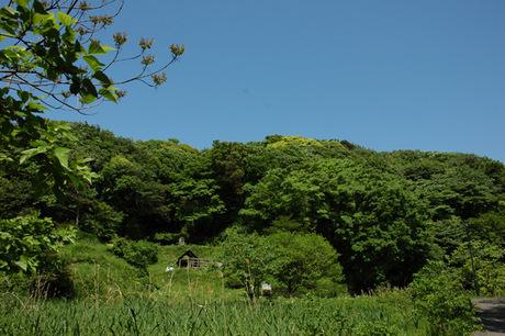 20080506_chuopark1