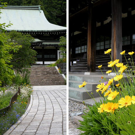 20080523_ryuhoji1