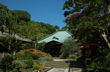 20080601_kaizoji1
