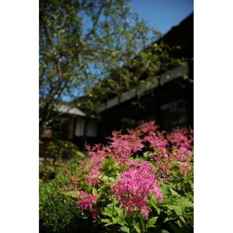 20080601_kaizoji2