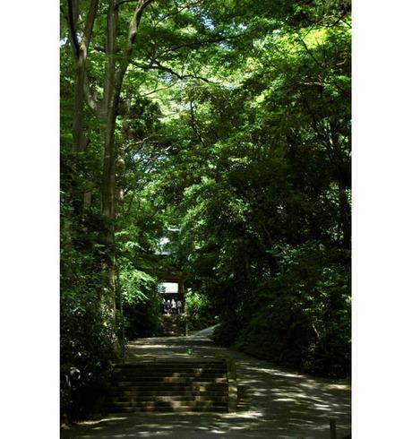 20080615_myohonji1
