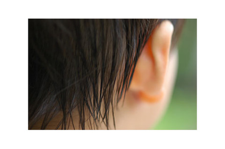 20080621_kaizoji7