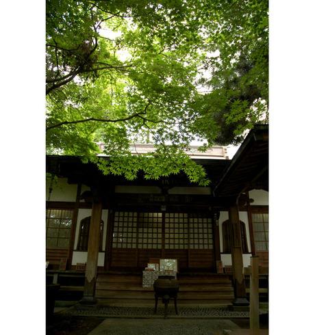 20080628_kakuonji1