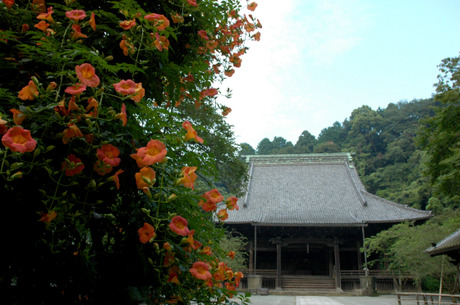 20080713_myohonji5