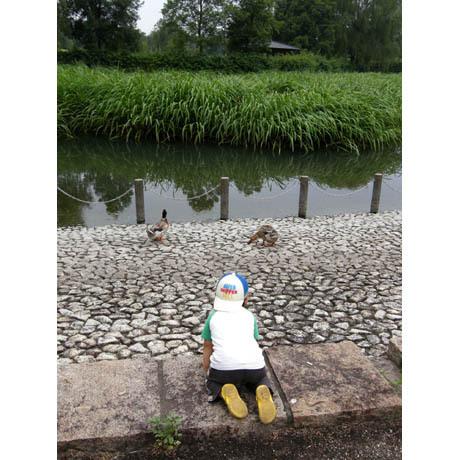 20080721_beppunuma1