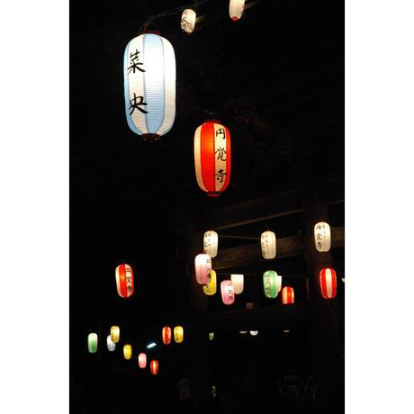 20080816_engakuji6