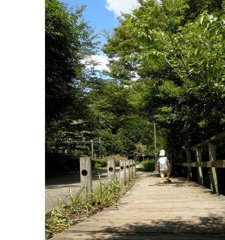 20080831_park2