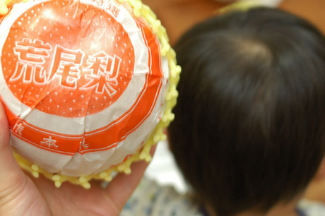 20081014_nashi2