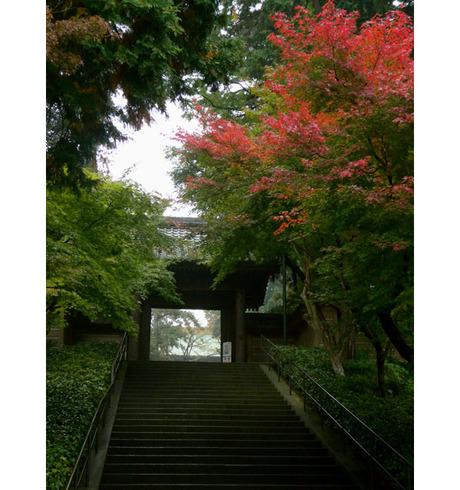 20081116_engakuji1a