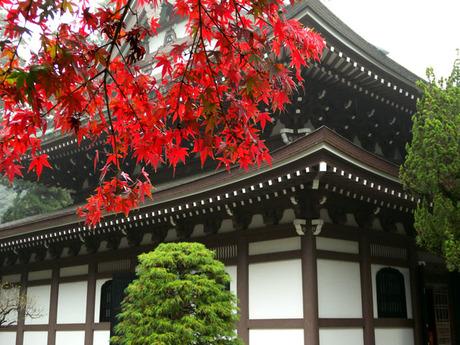 20081116_engakuji2