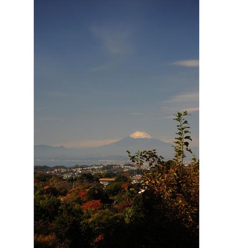 20081123_01kamakurayama