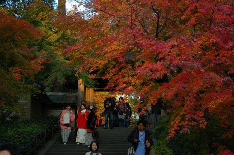 20081130_engakuji